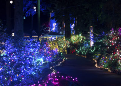 Christmas Festival of Lights at the Grotto (2016)