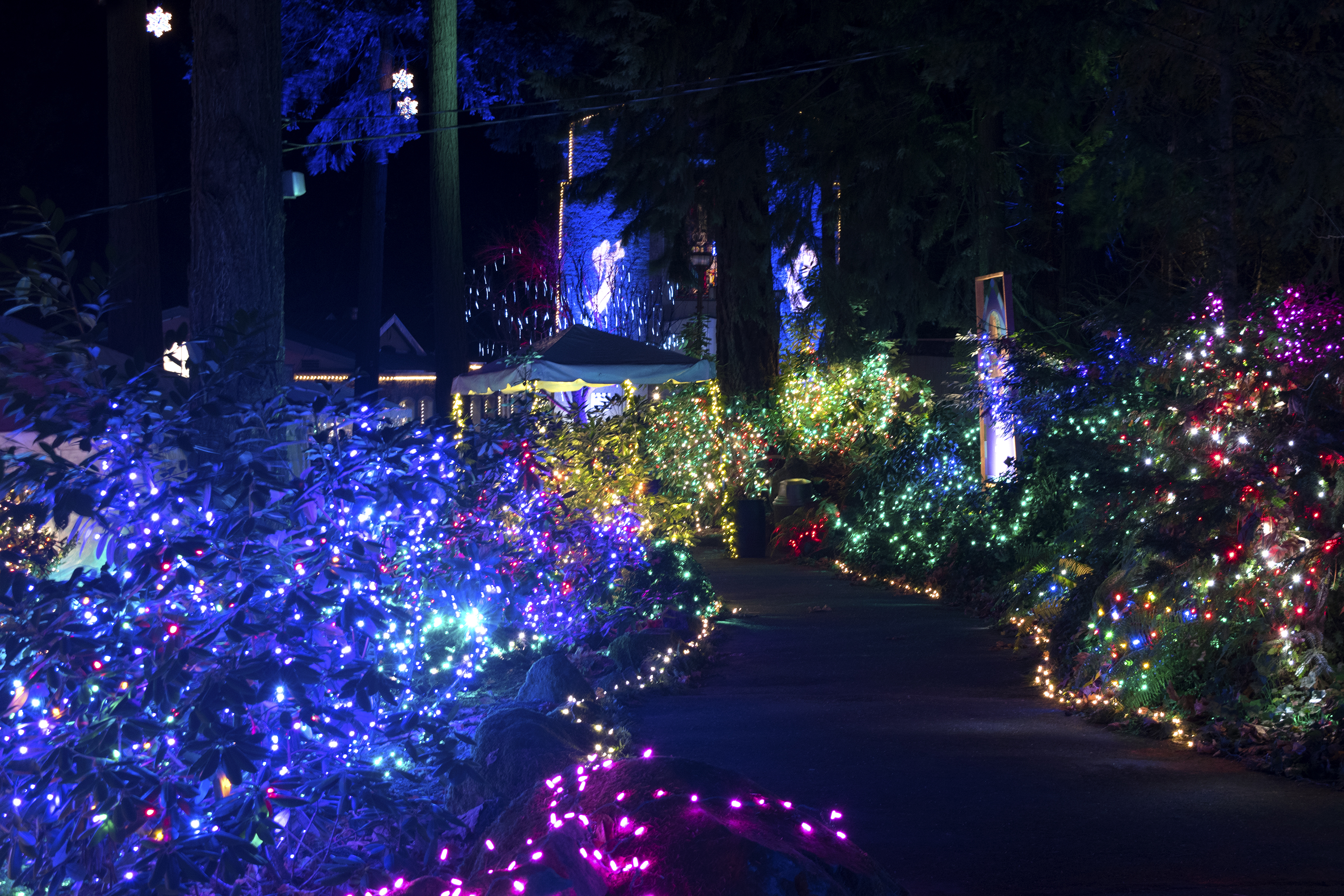Grotto 2016 Lights